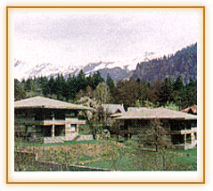 Banon Resorts, Manali Hotels